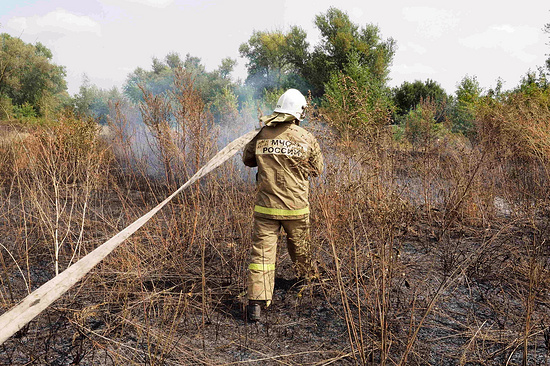 Размещены снятые свертолета кадры тушения лесных пожаров вДагестане